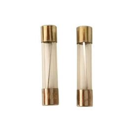 8ZED Glass Fuse 5A